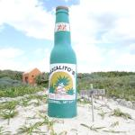 Playa Mezcalitos Foto