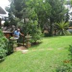 garden veiw