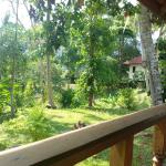 Vue depuis la terrasse du bungalow