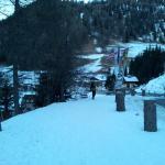 Foto van Hotel Alpino Plan