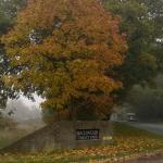 The entrance on the Bere Road (Autumn)