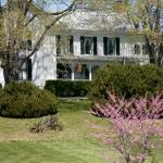 Springtime at the Asa Cline House