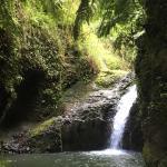 Maunawili Falls Foto