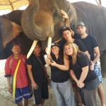 Photo of Woody's Elephant Guesthouse