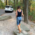 Take a drive through the park and stop at lookouts