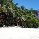 Bilde fra Alona Tropical Beach Resort