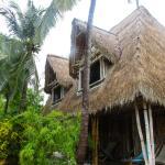 Jungle Beach VietNam Photo
