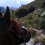 Serra de Tramuntana (Welterbe und super hoch zu Pferd)