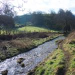 Gratton Dale and Rowlow Brook - 1.5 km from Elton Guest House