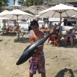 Foto de Oasis Ocean Club