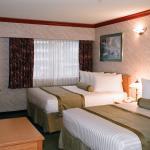 Std Guest Room - 2 beds