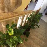 Foto de Oman Palm Hotel Suites
