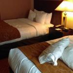 Foto de Comfort Suites Hopkinsville