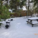 Photo de Leber's Log Cabins
