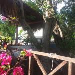 Photo de Hotel Casa Tucan