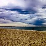 Burns Reserve (Altona Dog Beach)