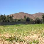 ภาพถ่ายของ Rancho Elquino