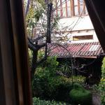 Courtyard outside window