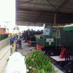 Looking along the Loco Shed.