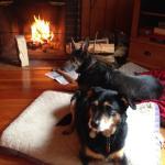 Zdjęcie Babbling Brook Cottages