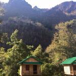 Foto de Green Climbers Home