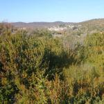 On a hike through the bushland surround Le Caylar. In the distance is La Couvertoirade.
