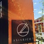 Asiarico7 resmi