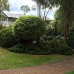 The view of the garden from our room