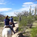 Photo de Houston's Horseback Riding