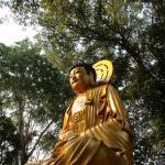 Peaceful Vihara Dharma Sasana Buddhist temple.