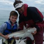 Black tip reef shark - my son's first shark ever!