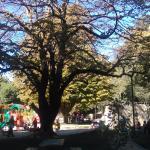 Cerro Caracol Foto