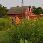 Foto de Cooksville Farmhouse Inn