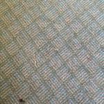 carpet/floor