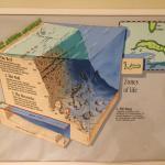 como se conforman sus playas y geografia