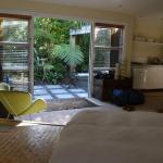 Indigo Bush Studios Foto