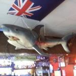 Foto van Surfers Bar & Grill