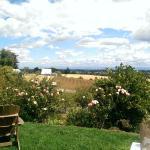 Beautiful Views at Cristom Vineyards