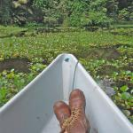 relaxing on my canoe ride