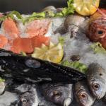 A nossa montra de peixe fresco