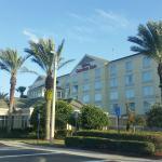 Hilton Garden Inn Jacksonville Airport Bild
