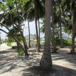 Pearl Beach View Picture