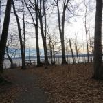 Foto de Parc Haut Fond