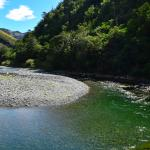 Swimming hole, Ashley river