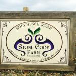 Stone Coop Farm