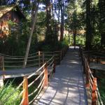 Walkway and traditional lodge