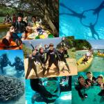 Okinawa Wave Marine Club