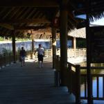 Foto de Nektar at Vidanta Riviera Maya