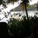 Sagu Mini Resort Resmi