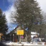 Photo of Hochkopfhaus zum Auerhahn